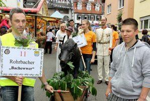 05-wp-rohrbach-bachewwer